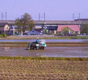 """Um . . . no, Sam."" Seriously, this is a rice-planting tractor. Little mechanical hands on the back stick each seedling down into the mud."