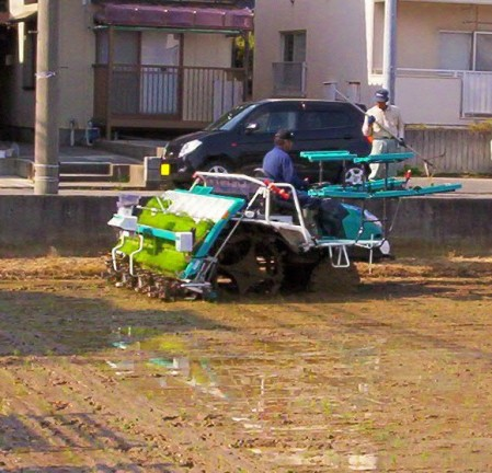 "Rice-planting tractor. Niigata is famous for its pure water, delicious rice, and delicious rice wine, or ""sake."""